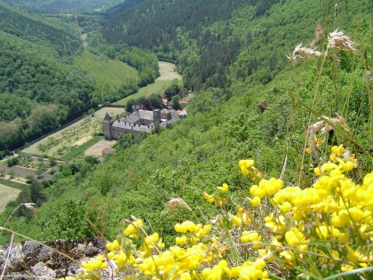 Monastère des Chartreuses à Nonenque