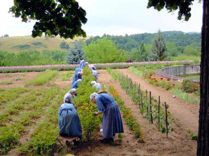 A la ferme du Bec-Hellouin entre abbaye et monastère